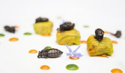 Edible insects ready to eat