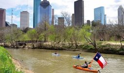 Kayakers on river with high rises