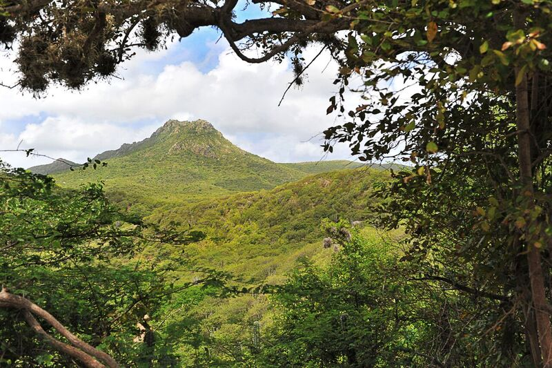 Curacao Mountain