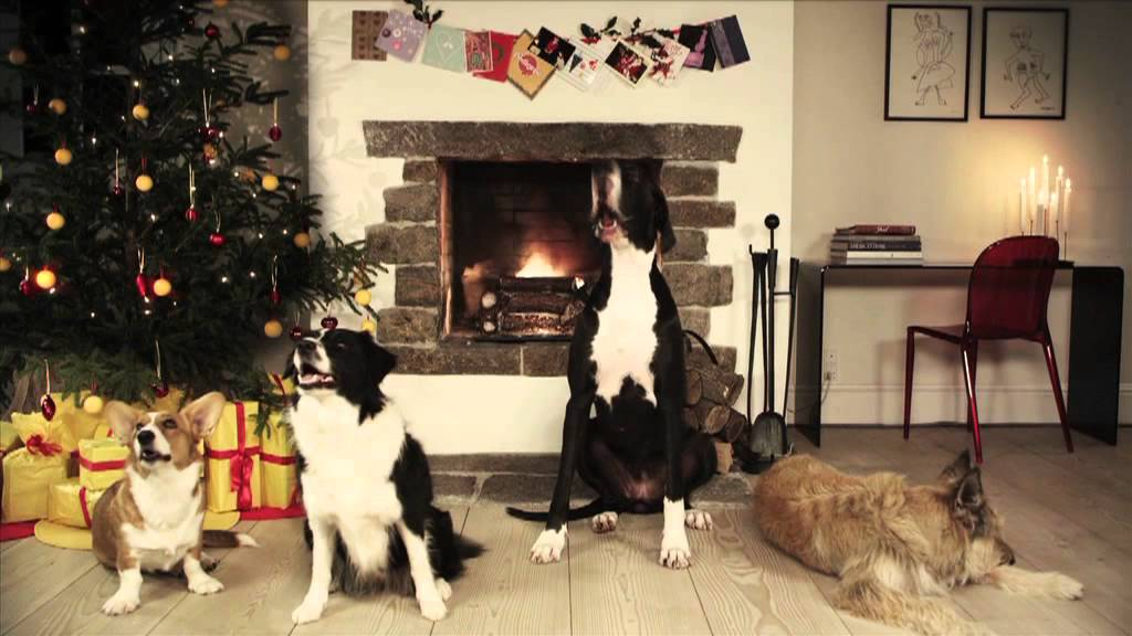 Four dogs in front of fireplace